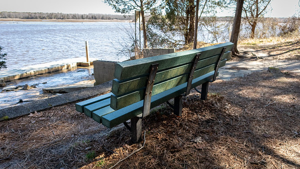 Bench along the Maurice River