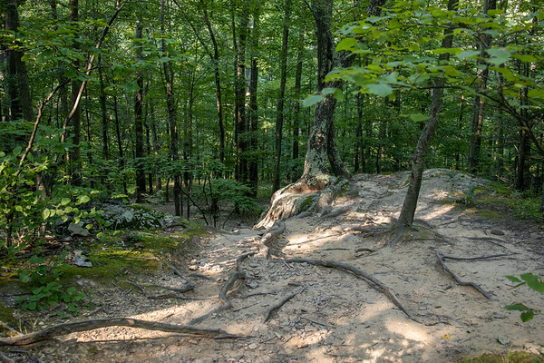 Mount Tammany, Delaware Water Gap, New Jersey