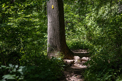 Schooley's Mountain Park, Long Valley, New Jersey