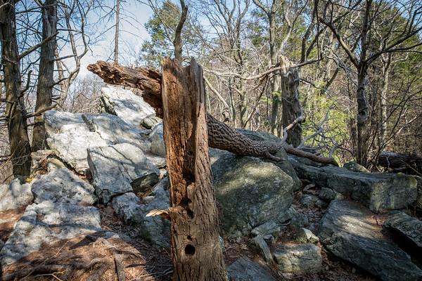 Hawk Mountain, Kempton, Pennsylvania