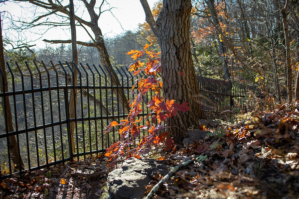 High Rocks State Park, Pipersville, Pennsylvania