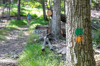 Cacapon State Park, Berkley Springs, West Virginia