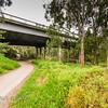 Banksia Street Bridge
