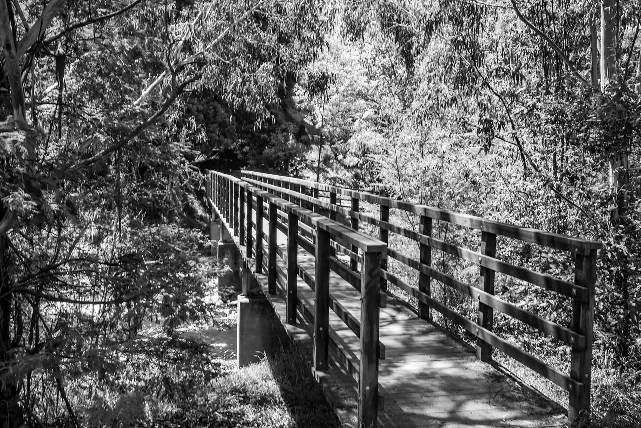 Bramich Footbridge