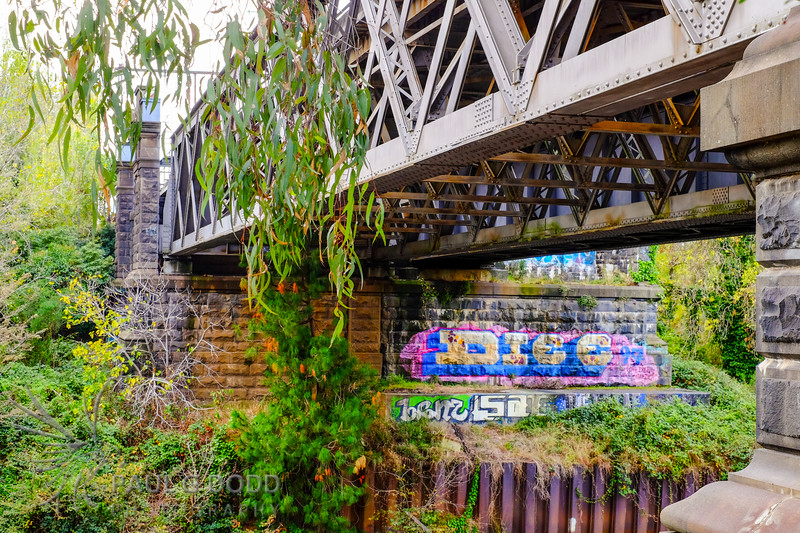 Hawthorn Railway Bridge