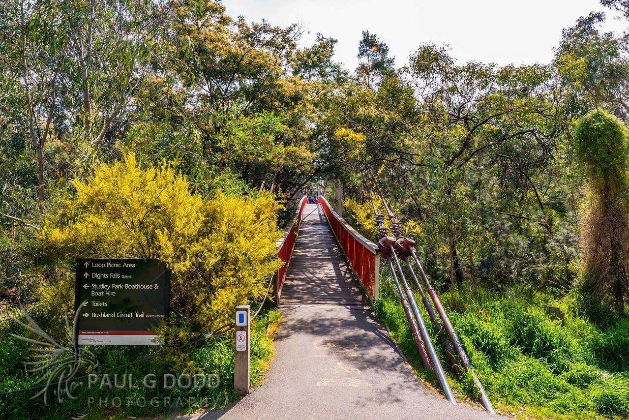 Kanes Bridge (Studley Park Footbridge)