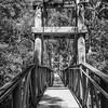 Redwood Bridge