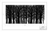"<center> <br> <a href=""https://dl.dropboxusercontent.com/u/25199074/Website%20Files/Macbeth%20CAD/07_Forest_Drop_Paint_Elevation.pdf"" target=_blank> <font size=+1><b>Forest Drop</b></font> </a> <br> <a href=""https://dl.dropboxusercontent.com/u/25199074/Website%20Files/Macbeth%20CAD/07_Forest_Drop_Paint_Elevation.pdf"" target=_blank> <img src=""/photos/i-CZWR42r/0/O/i-CZWR42r.png""> </center>"