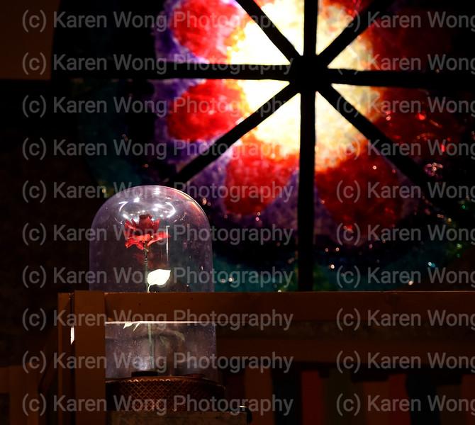 DSC_4242 rose glass crop
