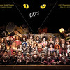 Cats-1