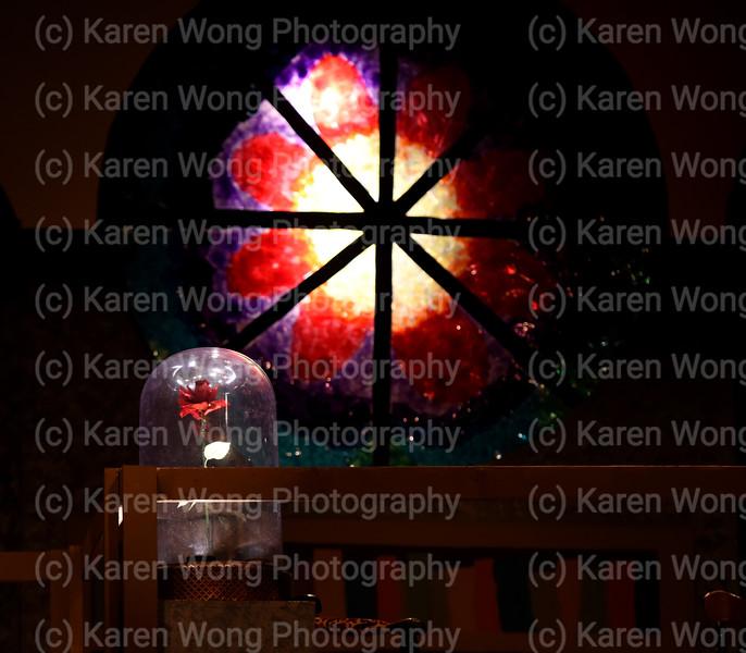 DSC_4242 rose glass