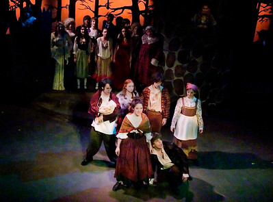Into The Woods  -  Roeper