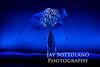 Botanica_001_IMG_9358-2_Jan07