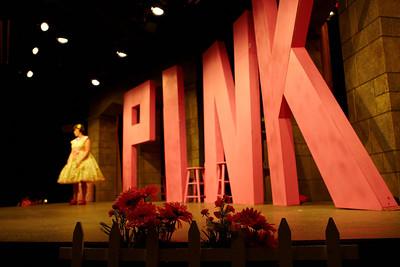 ncrt_2012_pink_003