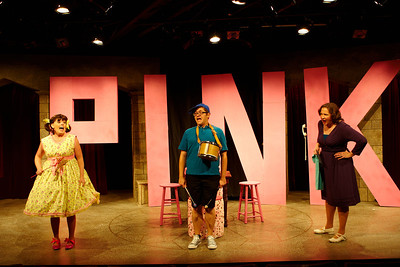 ncrt_2012_pink_037