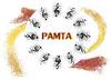 PAMTA-Logo
