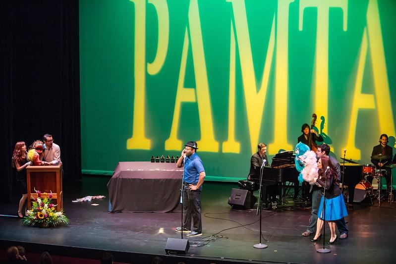 PAMTA-0173-130624