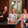 The Drexler Sisters: Linda (Emily Townley), Becky (Amy McWilliams), and Molly (Holly Twyford)  in Olney Theatre Center's production of BAD DOG. (Photo Nicholas Griner)