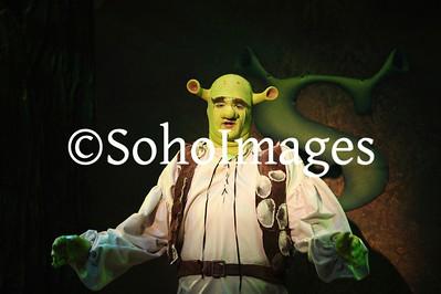 Shrek Performance 2015