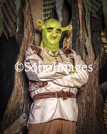 Shrek Portraits 2015