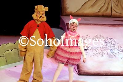 Winnie the Pooh Performance 2015