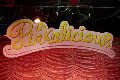 2012_dec_ncrt_pink_004