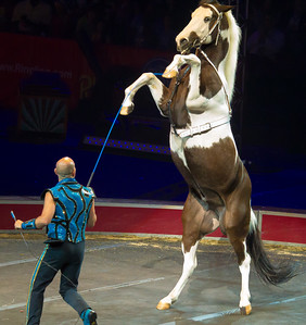 Ringling Bros. and Barnum & Bailey Circus - Fully Charged (March 15, 2012)