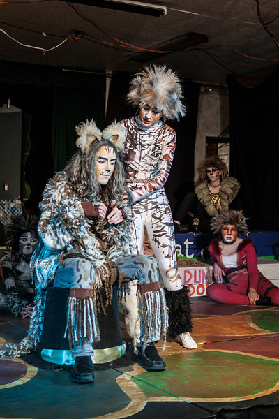 Santa Cruz Performing Arts Production of Cats-Show Pictures 2012-134