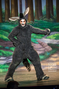 """""""Shrek The Musical"""" presented by The Keene Lions Club"""