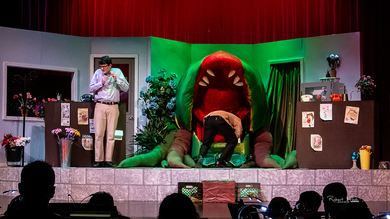 LittleShopofHorrors (47 of 72)