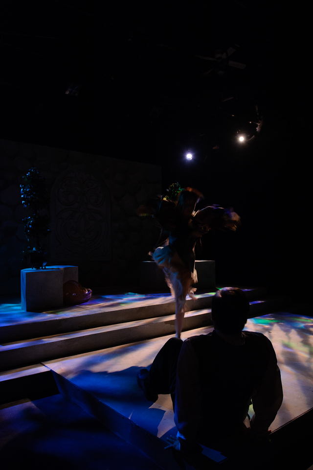 Winter's Tale Act 1 Highlights_14-006