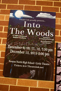 Into the Woods-8