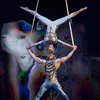 'Ovo' performed by Cirque du Soleil at the Royal Albert Hall, London, UK