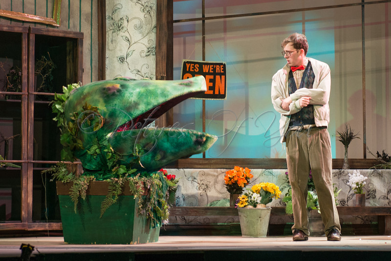 Little Shop of Horrors 180