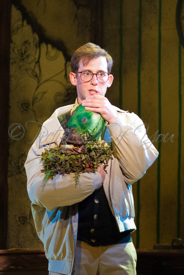 Little Shop of Horrors 060