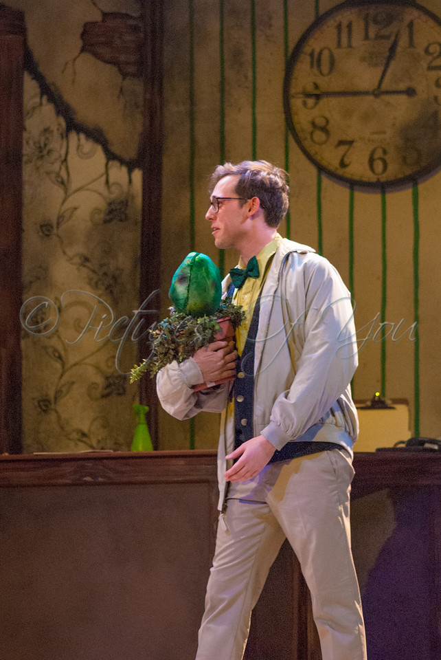 Little Shop of Horrors 055