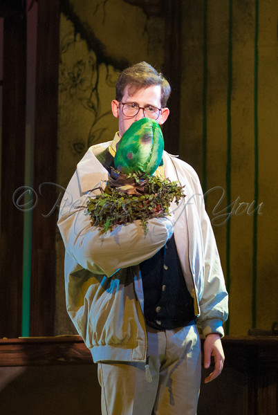 Little Shop of Horrors 059