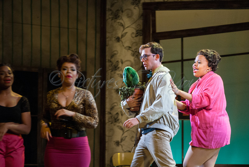 Little Shop of Horrors 061
