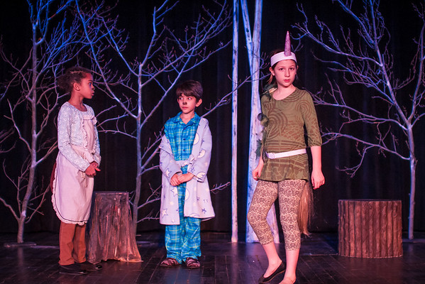 McC Edu Lion Witch at Stuart-5626