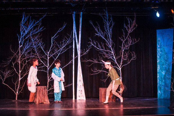 McC Edu Lion Witch at Stuart-5623