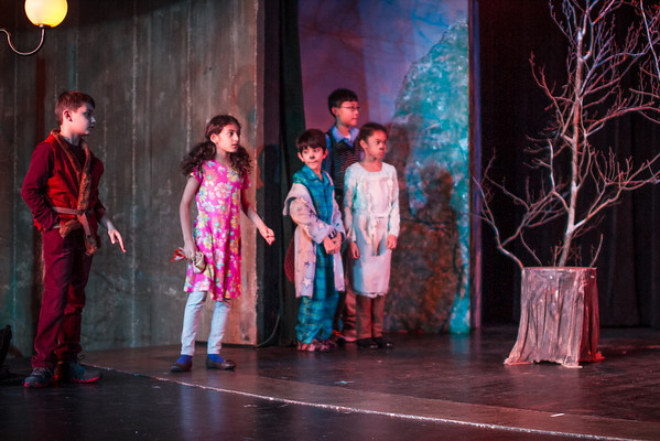 McC Edu Lion Witch at Stuart-5617