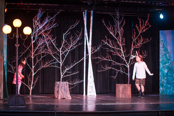 McC Edu Lion Witch at Stuart-5586