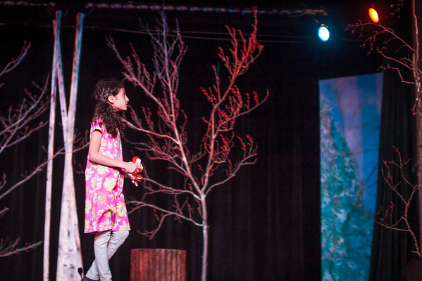 McC Edu Lion Witch at Stuart-5597