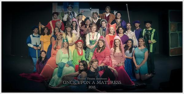 Once Upon A Mattress (2015)