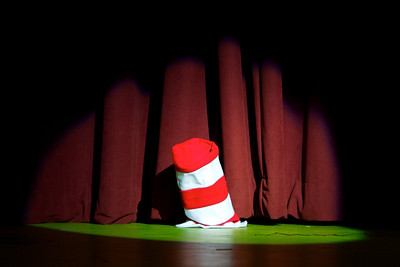 Seussical the Musical 2008