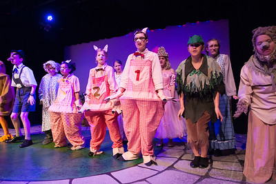 Shrek-TheMusical-BFPressPhoto-74