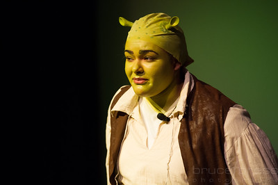 Shrek-TheMusical-BFPressPhoto-28