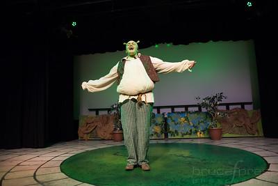 Shrek-TheMusical-BFPressPhoto-39