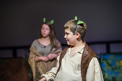 Shrek-TheMusical-BFPressPhoto-11