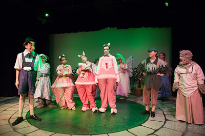Shrek-TheMusical-BFPressPhoto-50